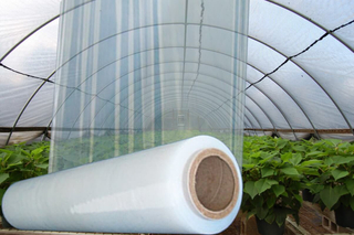 Transparent/Yellow 200mic Anti-UV Greenhouse Film