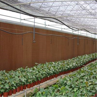 Greenhouse with Cheap Cooling System Multi-span Agricultural Hydroponic Greenhouse for Vegetables/flowers/fruits/garden/tomato/crop/corn