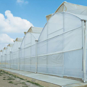 Butterfly Greenhouse Roof Ventilation System