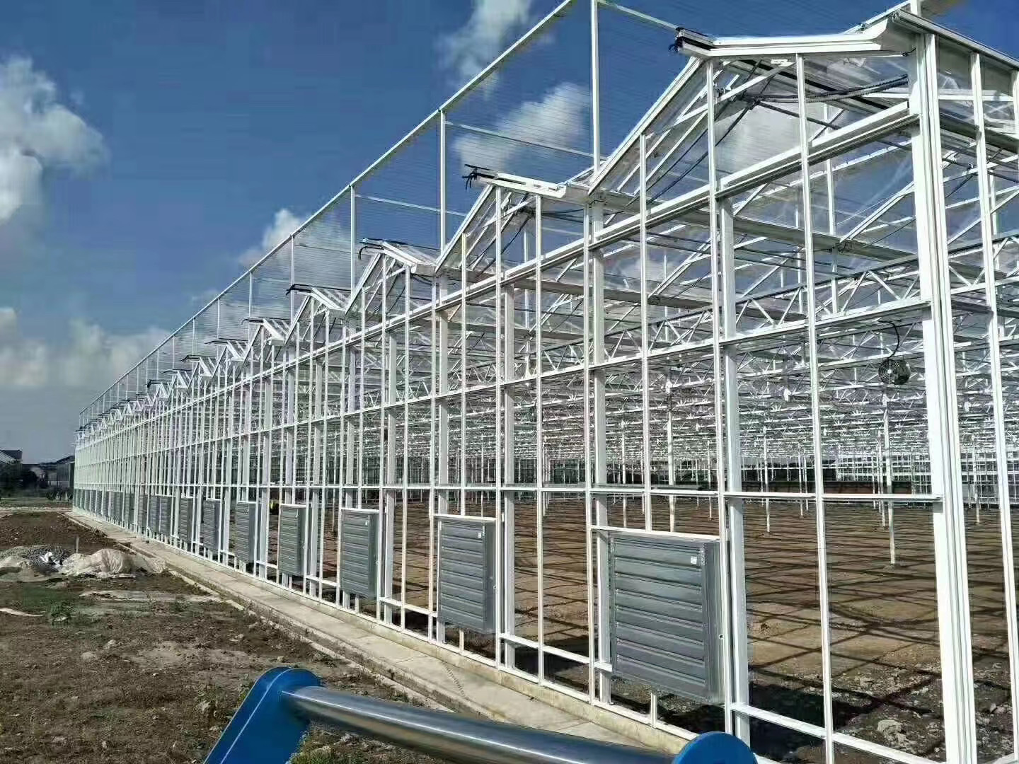 VENLO POLYCARBONATE SHEET COVER GREENHOUSE