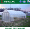 Vegetables Single Span/PE Film/Tunnel Greenhouse for Farm/Tomato/Flower/Lettuce Planting for Sale