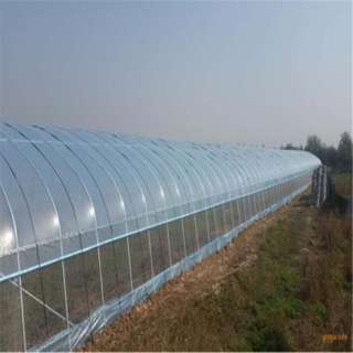 Covering film Greenhouse Hydroponic Venlo Multi-span Polycarbonate Agricultural Greenhouse for Vegetables/flowers/fruits/garden/tomato/crop/corn