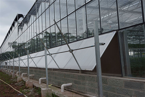 Ventilation System for Greenhouse