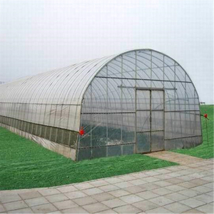 High quality Polytunnel Single-span cheap price Hydroponic Agricultural Film Greenhouse for Vegetables/flowers/fruits/garden/tomato/crop/corn