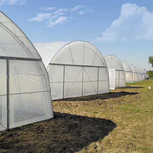 Single-span Poly Tunnel Greenhouse with PO/PE/EVA Film Covering