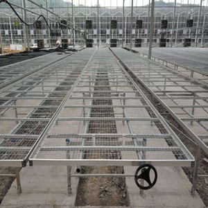 Cheapest High quality Nursery system Venlo Greenhouse Agricultural Greenhouse for Vegetables/flowers/fruits/garden/tomato/crop/corn