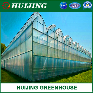 Vegetable/Flower/Planting Greenhouse with Hydroponics Growing System for Flowers