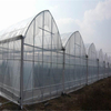 Multi-span Polytunnel Hydroponic Venlo Agricultural Polycarbonate Film Greenhouse for Vegetables/flowers/fruits/garden/tomato/crop/corn