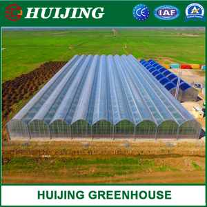 Poly/PC Sheet/Hydroponic Greenhouse for Hydroponics/Vegetables/Flowers/Seed Breeding/Tomato/Cucumber/Strawberry Planting for Sale