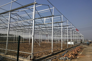 Steel Structure of Greenhouse