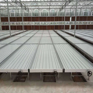 High quality Nursery system Venlo Greenhouse Agricultural Greenhouse for Vegetables/flowers/fruits/garden/tomato/crop/corn