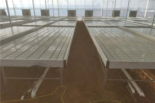 Galvanized Steel Frame Greenhouse Rolling Bench Plant Nursery
