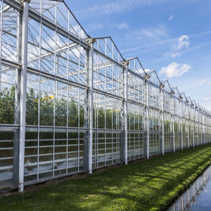 Great Performance Venlo Glass Greenhouse Solution