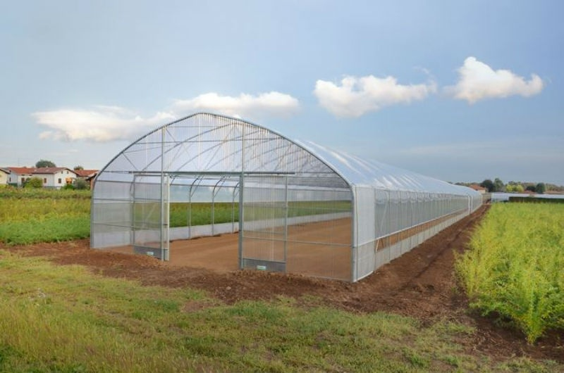 Solar Single Span Film Covered Green House with Hydroponics for Anti-Season Vegetable Tomato/Cucumber/Peppers/Lettuce/Cultivation