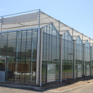 Commercial Multi-Span Hydroponic Glass Greenhouse for Vegetable