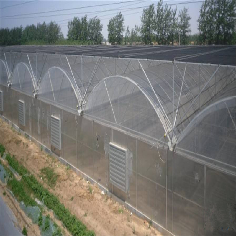 Venlo Multi-span Polytunnel Hydroponic Agricultural Polycarbonate Film Greenhouse for Vegetables/flowers/fruits/garden/tomato/crop/corn