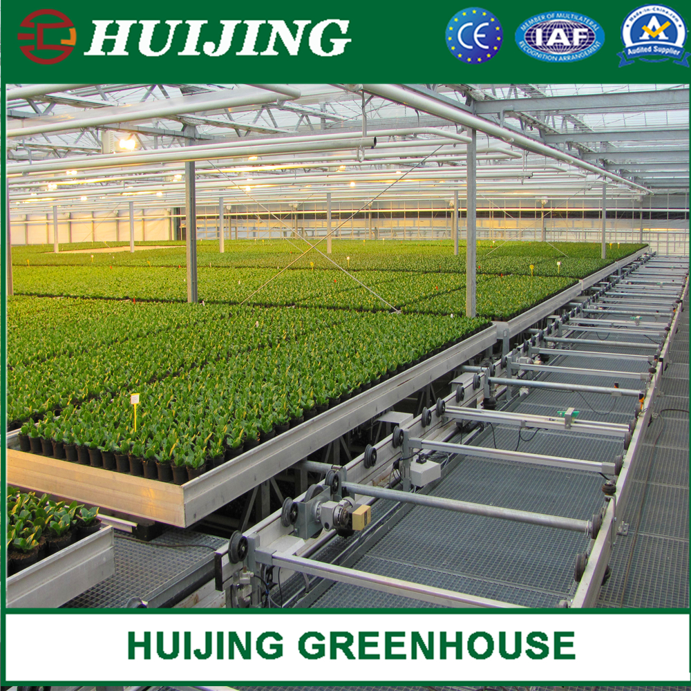 Greenhouse Seedbed and Other Planting System, Nursery Benches
