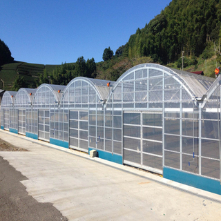 Polytunnel Hydroponic Venlo Multi-span Agricultural Polycarbonate Film Greenhouse for Vegetables/flowers/fruits/garden/tomato