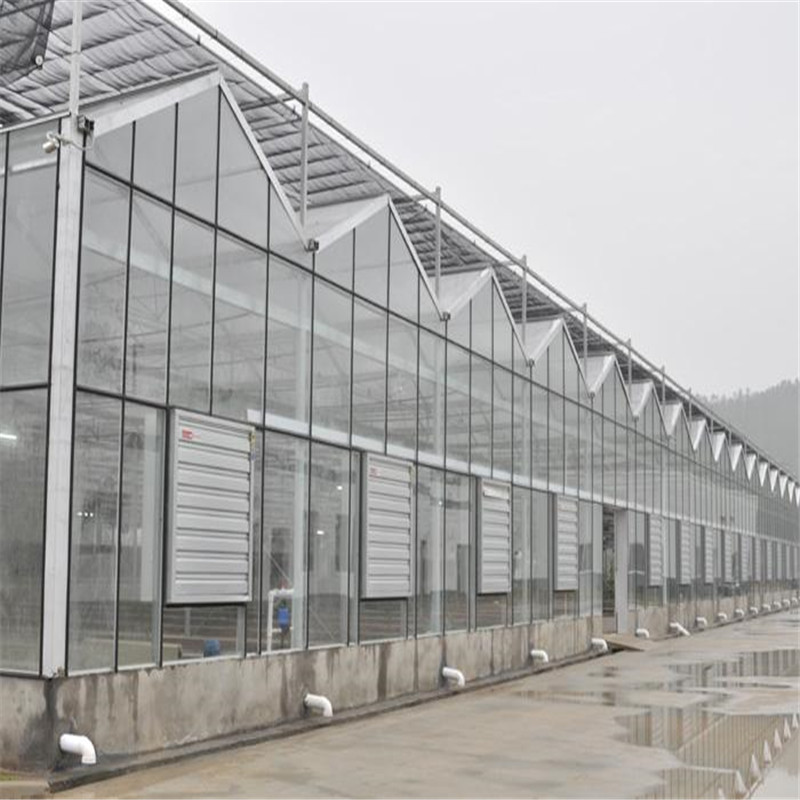 Professional Greenhouse Exhaust Fan Quality Hot Sale Cooling Pad Paper Factory Exhaut Fan