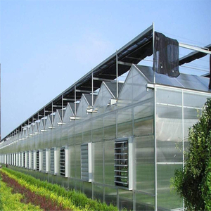 High quality cheap price Hydroponic Agricultural Polycarbonate Greenhouse for Vegetables/flowers/fruits/garden/tomato/crop/corn