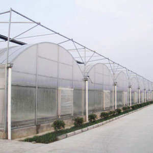 Multi-span Polycarbonate Greenhouse