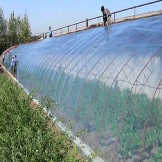 Leaf Vegetable Solar Greenhouse with Po/PE Film