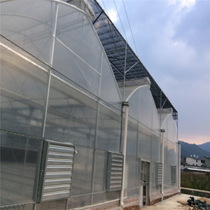 Polycarbonate sheet Covering Greenhouse Hydroponic Venlo Multi-span Agricultural Greenhouse for Vegetables/flowers/fruits/garden/tomato/crop/corn