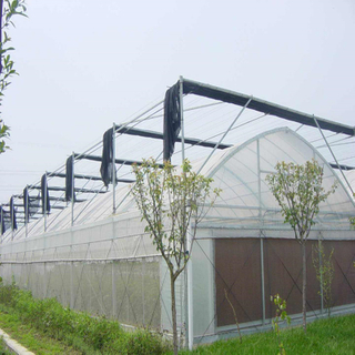 Agricultural Hydroponic greenhouse with high quality outside shade System Multi-span Greenhouse for Vegetables/flowers/fruits/garden/tomato/crop/corn