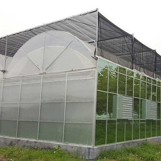 Single-Span Garden Greenhouse for Agriculture