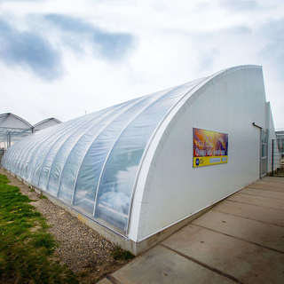 China Passive Solar Greenhouse for Cold Area