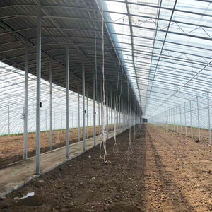 Large High Tunnel Winter Greenhouse for Agriculture